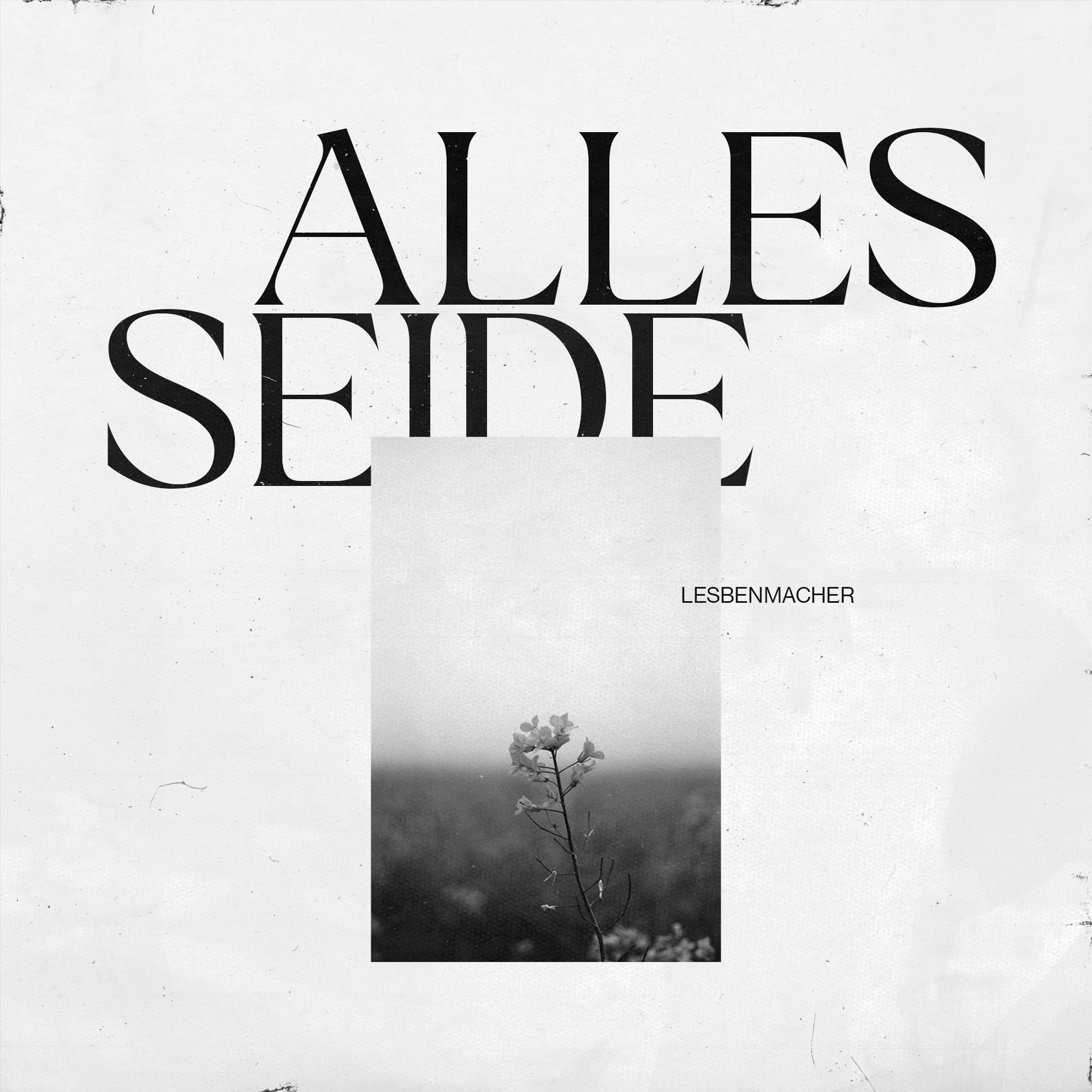 Alles-Seide-Cover